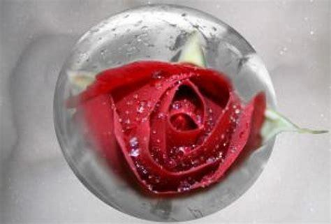 Romantische Badewanne by Romantische Badewanne Der Kostenlosen Fotos