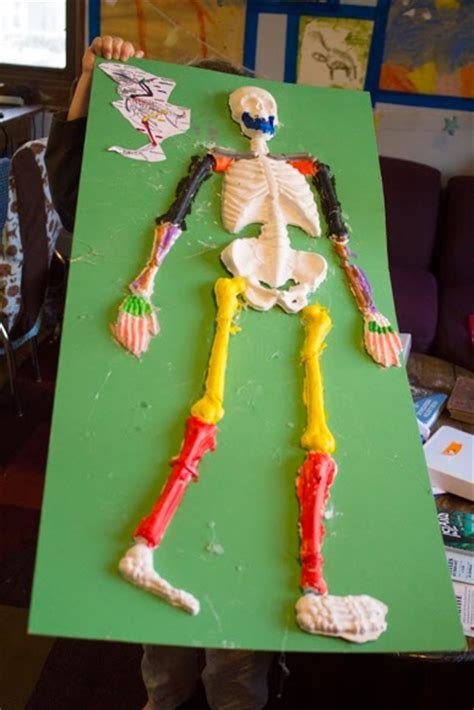 How To Make A 3d Human Out Of Paper - craft knife homeschool science comparison of the human