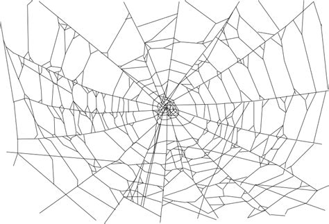 png pattern for website clipart realistic spider web