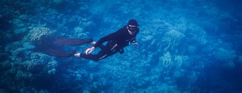 dive dahab dahab diving rock climbing trekking freediving
