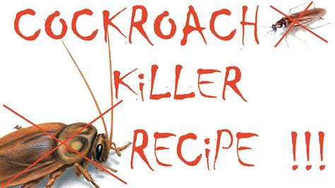 how to get rid of cockroaches cockroach remedy