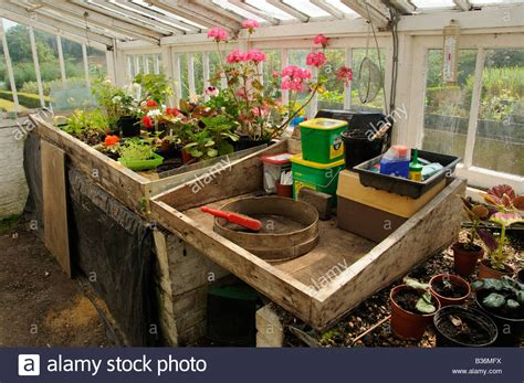 large potting bench potting bench in large traditional wooden greenhouse uk