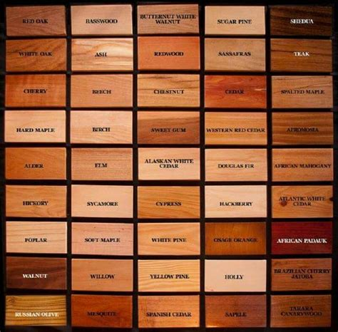 woodworking names wood identification chart woodworking