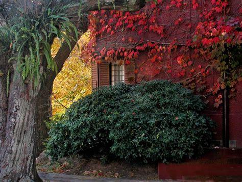 sognare pioggia in casa il dolce incanto dell autunno cancelloedarnonenews