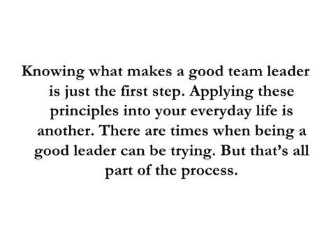 team leader view helping high performance teams team coaching