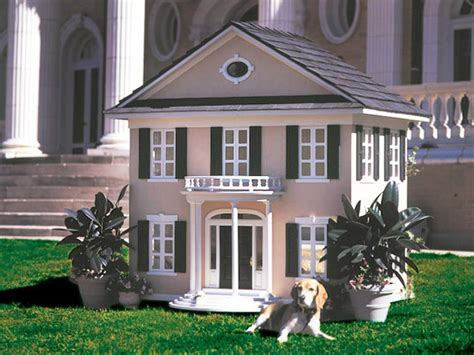 the best house dog 27 innovative doghouse designs diy