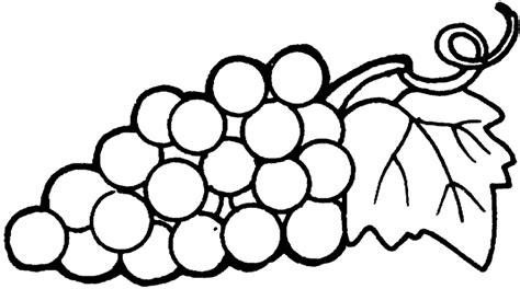 imagenes uvas para pintar dibujos para pintar frutas uvas dibujos para recortar