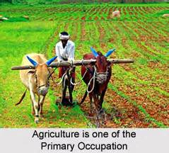 Changing Of Rural India Essay by Essay On Rural Livelihoods In India Qualityassignments X Fc2