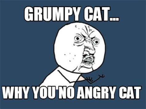 Angry Cat No Meme - meme creator grumpy cat why you no angry cat meme