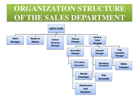 sle of organizational structure 13 best marketing sales department structure images on for sale organisation and