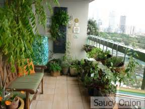 Starting A Herb Garden Indoors - saucy onion edible balcony spring deluge