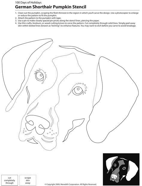pattern lab deutsch 22 free pumpkin carving dog stencils breed specific