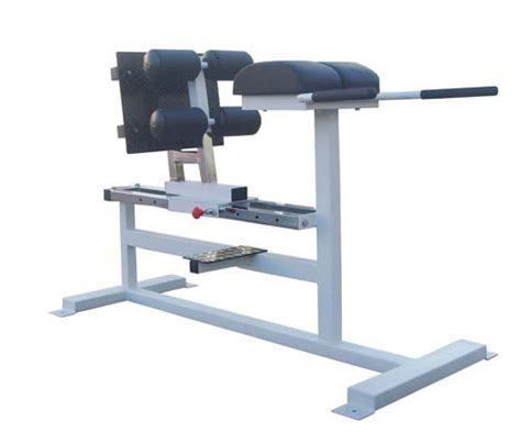 chair back extension muscles back extension chair back exercise equipment