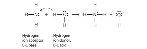 Does Detoxing Ammonia Means It Removes It From The Aqauarium by 12 2 Br 248 Nsted Lowry Definition Of Acids And Bases Chemwiki