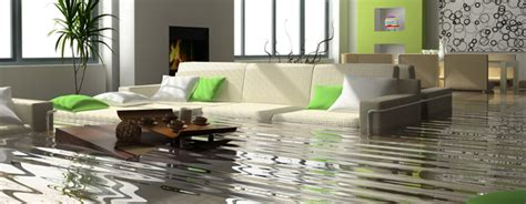 Should I Buy A House With Water Damage 28 Images Should You Buy A Home With
