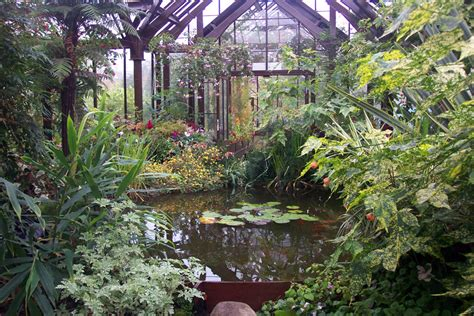 Botanic Gardens Glasgow Glasgow Botanic Garden Glasgow Botanic Gardens 187 Gardens Pictures Summer In The City