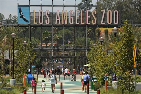los angeles zoo los angeles county zoo and botanical garden admission prices increase at los angeles zoo updated