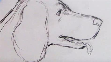 draw  dog spaniel youtube
