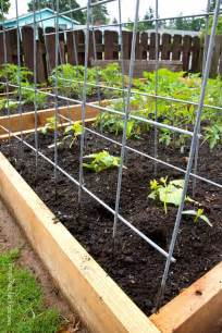 Diy Trellis Plans Diy Garden Trellis Plans Healthier Gardens