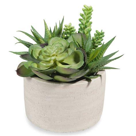 piante grasse da vaso vaso di piante grasse artificiali maisons du monde