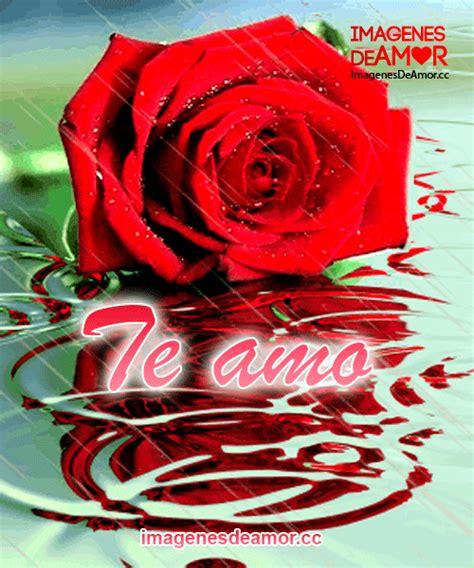 imagenes rosas de amor con movimiento 8 im 225 genes de amor con rosas y frases con movimiento