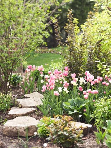fiori di primavera da giardino fiori per giardino idee per la casa syafir