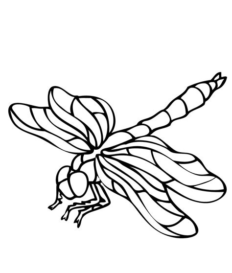 dragonfly coloring page printable dragonfly coloring pages coloring me