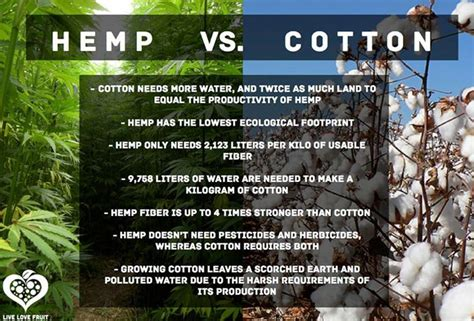 bamboo vs cotton cotton bamboo and how cannabis can revolutionize industry
