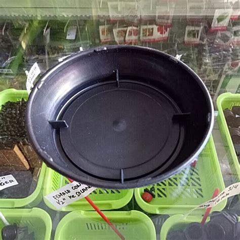 Pot Plastik 10 Cm Dan Tatakan tatakan pot diameter 13 cm hitam bibitbunga