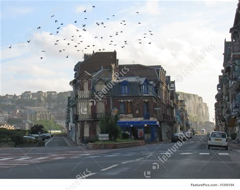 gull house norman house with sea gull flying over it mers le bains normandy france image