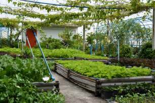 regenerative organic agriculture roof top gardens for climate smart cities