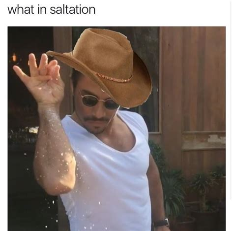 what in tarnation meme what in saltation what in tarnation your meme