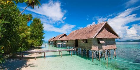 nature water cabin scuba diving beach palm trees