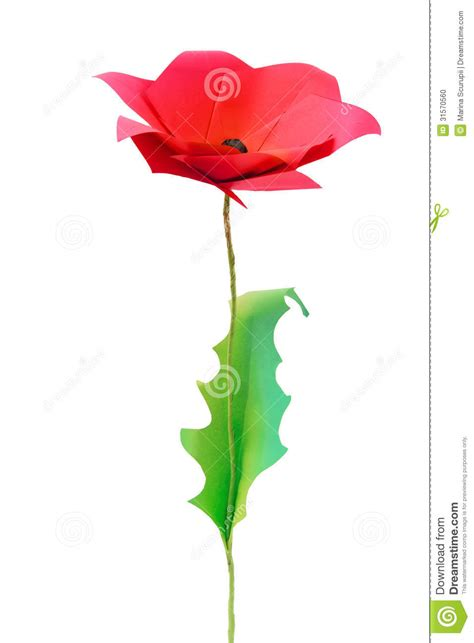 Origami Poppy Flower - origami poppy flower stock photo image 31570560