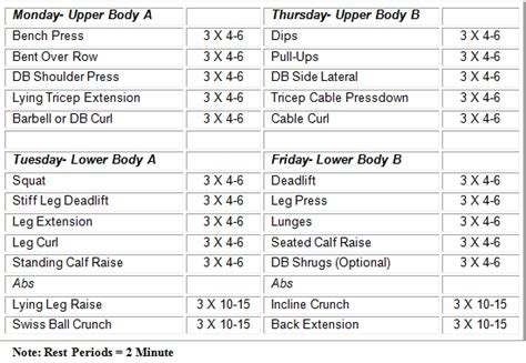 weight bench training program the final phase stubborn fat protocol and lifting heavy