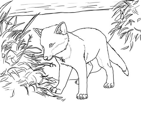 realistic fox coloring page free printable fox coloring pages for kids