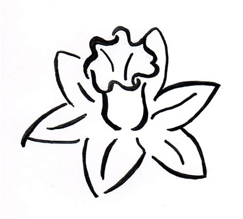 daffodil outline clipart best clipart best