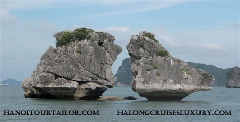 Halong Bay Private Day Tour