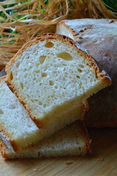 ricetta pane in casa ricetta pane fatto in casa con malto dolcipocodolci