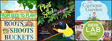 plant a seed see what grows foundationbest gardening