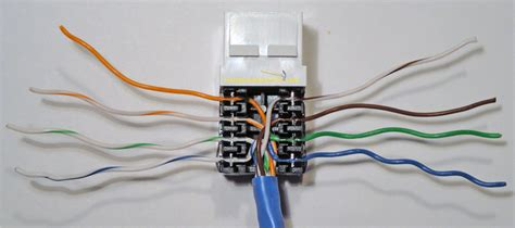 cat5e wall socket wiring diagram agnitum me