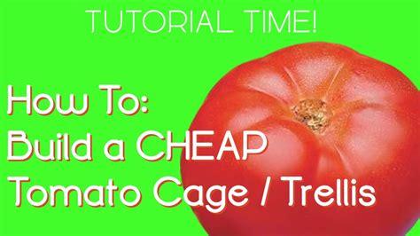 Diy Garden Trellis Ideas Growing Tomatoes Diy Cheap Tomato Cage Trellis Youtube