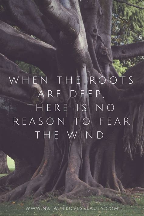 Wedding Quotes Roots by 25 Best Roots Quotes On Tree Quotes Happy