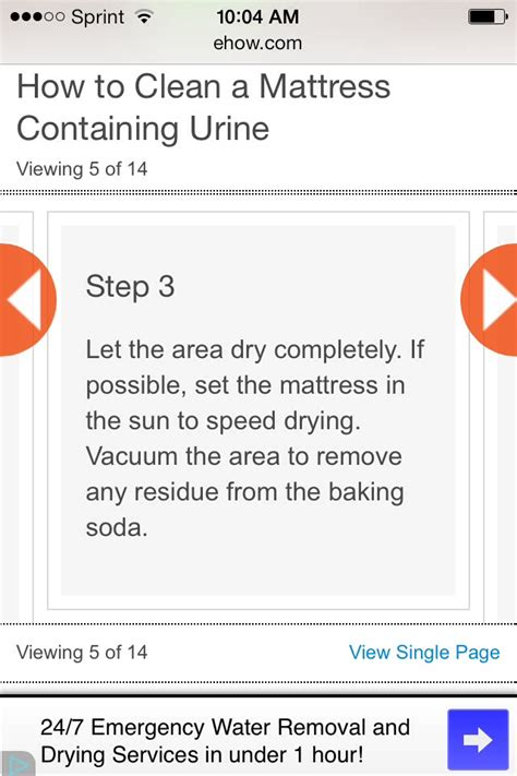 How To Get Urine Stain Out Of A Mattress by How To Get A Urine Stain Out Of A Mattress Musely