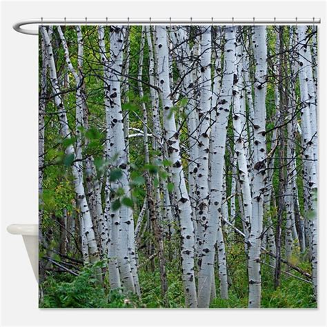 tree shower curtain aspen trees shower curtains aspen trees fabric shower