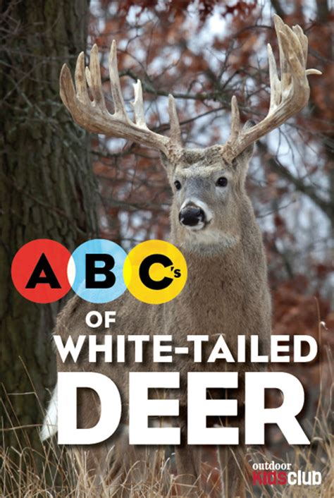 the simi s abcs adventures with hunters books abc s of white tailed deer outdoor club