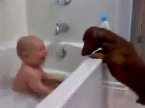 baby in bathtub laughing at dog baby having fun at bath with dog youtube
