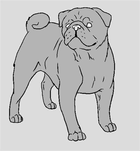 pug template dog breeds picture
