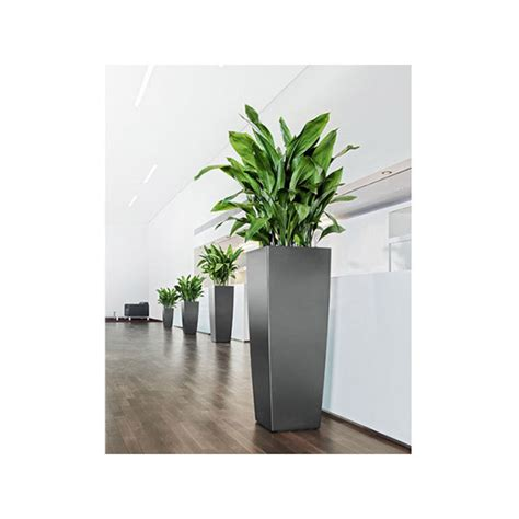 Column Planters by Column Planter Plant Jungle