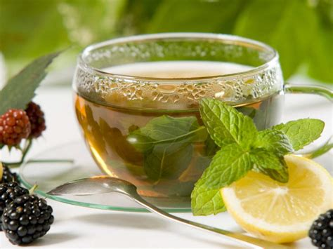 Herbal Tea buy lemon balm tea benefits preparation side effects herbal teas
